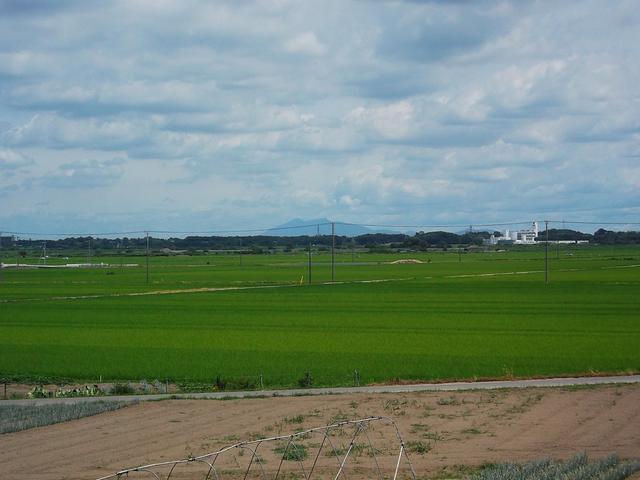 まわりは緑に囲まれ、天気がいいとお店から筑波山も見えるんですよ♪